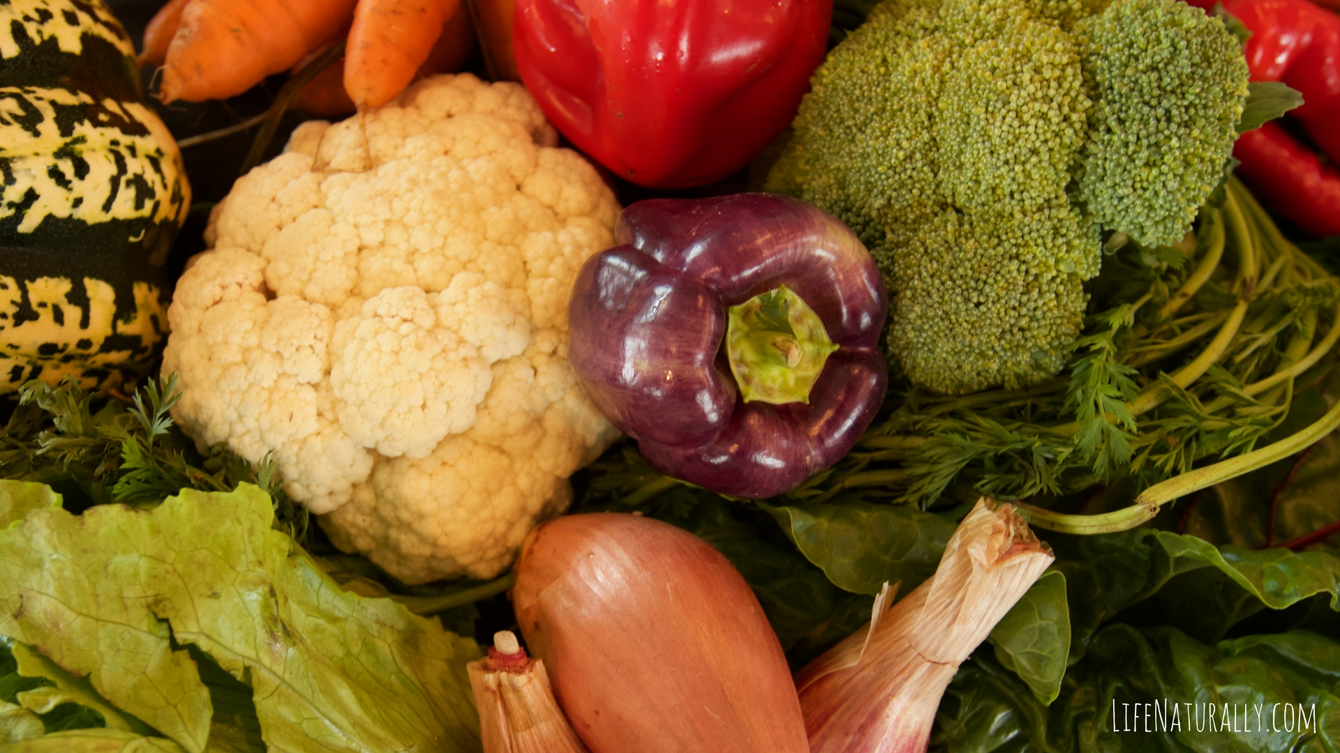 Community Supported Agriculture (CSA) Weekly Basket