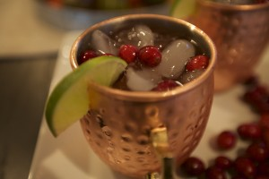 close-photo-ginger-kombucha-moscow-mule